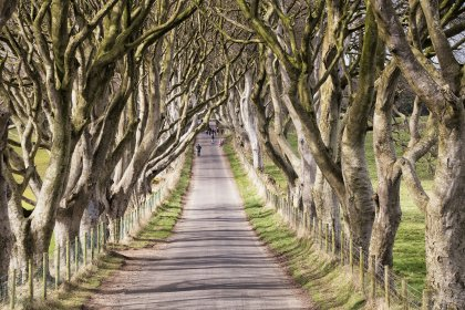 Les paysages de Game of thrones, en Irlande du Nord -5
